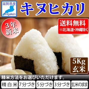 令和2年産 新米 滋賀県産キヌヒカリ5Kg玄米 【精米方法が選べます】 お好きな分つきに 健康応援 送料無料※一部地域を除く hatasyou-ten