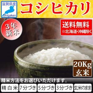 令和2年産 新米 滋賀県産コシヒカリ20kg玄米(10kg×2本) 【精米方法が選べます】 お好きな分つきに 健康応援   送料無料※一部地域を除く hatasyou-ten