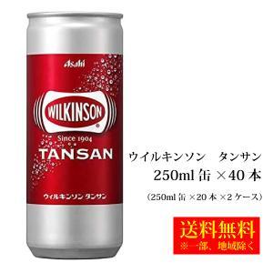 アサヒ飲料 ウイルキンソン タンサン250ml缶×40本 送料無料 一部地域除く|hatasyou-ten
