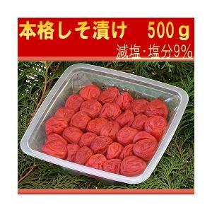 紀州南高梅 はてなしシリーズ しそ漬け梅 500g|hatenasi