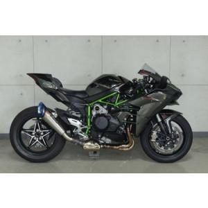 トリックスター レーシングスリップオン Ninja H2 《トリックスター RST-H01-RYT》|hatoya-parts