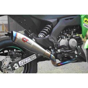 ストライカー G-STRIKER フルEX マフラー Z125PRO (ストライカー GS34041) hatoya-parts