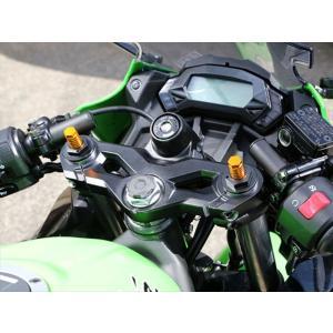 バイク サスペンション&ローダウン ベビーフェイス フロントフォークトップキャップ SLV Ninja250SL 15- BABYFACE 005-K0012SV 取寄品|hatoya-parts