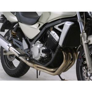 DAYTONA エンジンプロテクター バリオス/2(02-08) (デイトナ 79951)|hatoya-parts