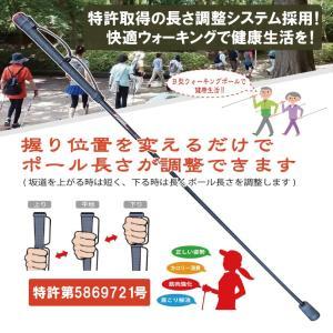 B型ウォーキングポール(2本セット)|hatsumei-net