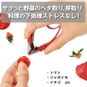 フルベジ ピコ (ヘタ取り) ※送料¥200(2個まで)|hatsumei-net