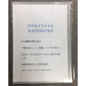 落ちないクリアファイル「サクセスファイル」(5枚セット) (落ちない) ※送料¥200(5個まで)|hatsumei-net
