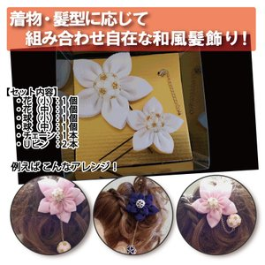 八方美人(Bセット)|hatsumei-net