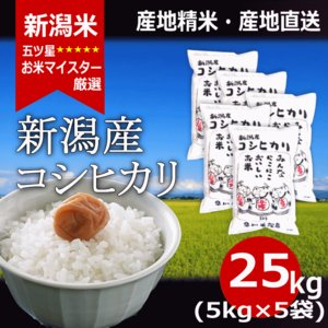 お米 コシヒカリ 5kg ×5袋 新潟県産コシヒカリ 25kg 送料無料 令和元年産|haya-kome