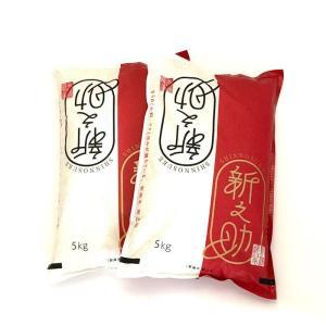 新之助 しんのすけ 平成30年産  新潟産 10kg (5kg×2) 送料無料 (本州のみ)|haya-kome