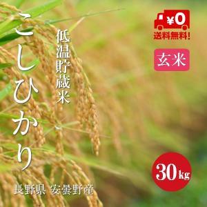 長野こしひかり 安曇野産 1等米 30年産 玄米 【30kg】|hayashiya-kome