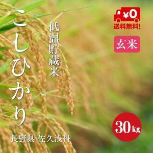 長野こしひかり 浅科産 特A1等米 30年産 玄米 【30kg】|hayashiya-kome