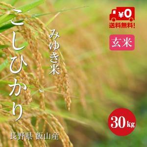 幻の米 飯山 みゆき米 長野県産こしひかり 1等米 30年産 玄米 【30kg】|hayashiya-kome