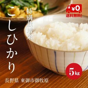 特別栽培米 こしひかり 御牧原産 1等米 30年産  白米 【5kg】|hayashiya-kome