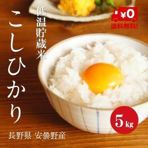 長野こしひかり 安曇野産 1等米 30年産 白米 【5kg】|hayashiya-kome