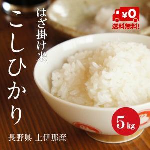 長野県産 こしひかり 「はざ掛け米」 1等米 30年産 白米 【5kg】|hayashiya-kome