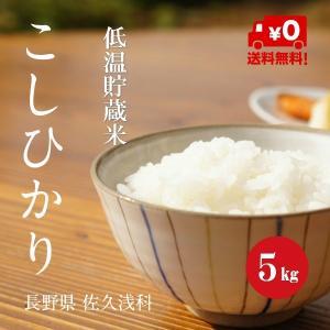 長野こしひかり 浅科産 特A1等米 30年産 白米 【5kg】 hayashiya-kome