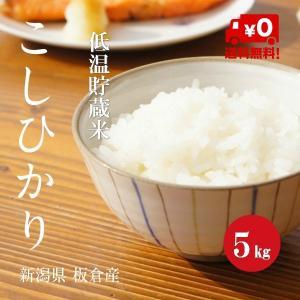 新潟こしひかり 上越板倉産 1等米30年産 白米 【5kg】|hayashiya-kome