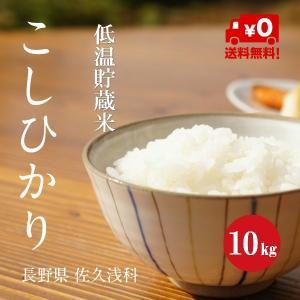 長野こしひかり 浅科産 特A1等米 30年産 白米 【10kg】 hayashiya-kome