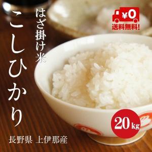 長野県産 こしひかり 「はざ掛け米」 1等米 30年産 白米 【20kg】|hayashiya-kome