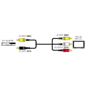 JVCケンウッド ビクター ピンプラグX2-ピンプラグX3 1M 2重シールド VX-310E|hayate