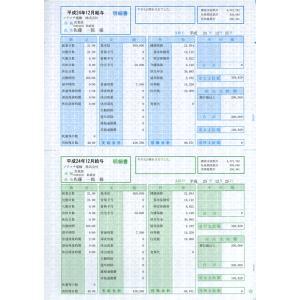ソリマチ サプライ SR210 給与・賞与明細書(明細型) 500枚 hbsshop