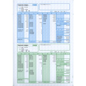 ソリマチ サプライ SR230 給与・賞与明細書(明細タテ型) 500枚 hbsshop