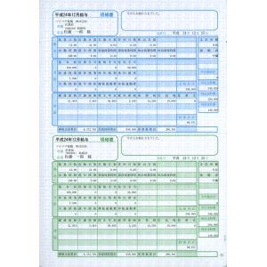 ソリマチ サプライ SR231 給与・賞与明細書(明細ヨコ型) 500枚 hbsshop