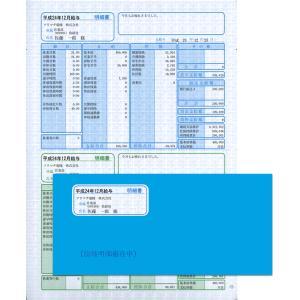ソリマチ サプライ SR281 給与・賞与明細(明細タテ型)・封筒割引セット 500枚 hbsshop