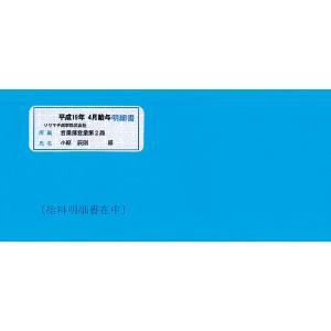 ソリマチ サプライ SR291 給与・賞与明細書用封筒(窓付き) 500枚 hbsshop