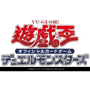 遊戯王OCG RARITY COLLECTION -PREMIUM GOLD EDITION- BOX【予約受付中:2/8発売予定】|hbst-store