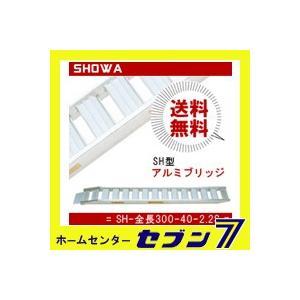 アルミブリッジ SH型 (SH-全長300-40-2.2S) 1セット2本 鉄シュー・ゴムシュー兼用 昭和ブリッジ hc7