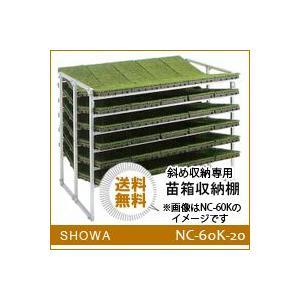 苗箱収納棚 (NC-60K-20) 斜め収納専用 昭和ブリッジ 送料無料 hc7