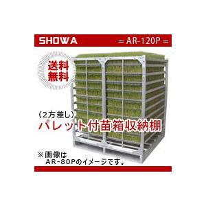 パレット付苗箱収納棚(AR-120P) 水平収納専用 (パレット:2方差し) 昭和ブリッジ 送料無料 hc7