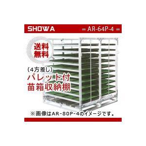 パレット付苗箱収納棚(AR-64P-4) 水平収納専用 (パレット:4方差し) 昭和ブリッジ 送料無料 hc7