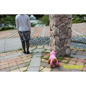 カラフルレインコート/ローズピンク 小型犬用 (M-XLサイズ)RUISPET ルイスペットドッグウェア(メール便/代引不可/着日指定不可)|hc7|04