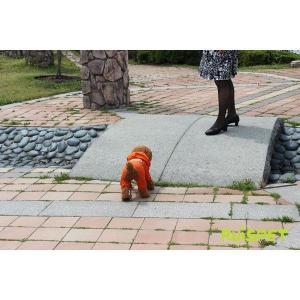 カラフルレインコート/オレンジ 小型犬用 (M-XLサイズ)RUISPET ルイスペットドッグウェア(メール便/代引不可/着日指定不可) hc7 03
