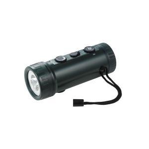 朝日電器 エルパ ラジオ付ライト DOP-660 4901087200962
