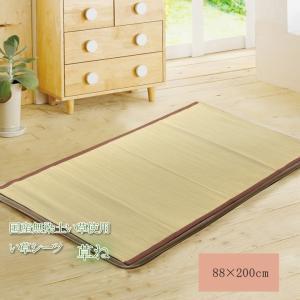 純国産 い草敷きパット 『草ね 汗取りP』 シングル 約88×200cm 7403859 イケヒコ|hc7
