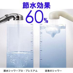 アラミック シャワーヘッド ST-X3B 節水シャワー プレミアム シルバー|hc7|10