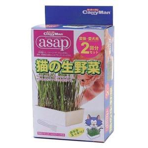 猫の生野菜 (2回分) asap アサップ 猫が食べる植物の栽培キット|hc7