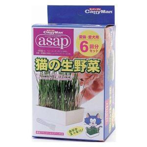 猫の生野菜 (6回分) asap アサップ 猫が食べる植物の栽培キット キャッティーマン|hc7