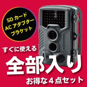 【全部入り】【お得な4点セット】防犯カメラ 電池式 SDカード録画 屋外 ワイヤレス 超小型 トレイルカメラ CK-S680|hdc