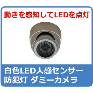 ダミーカメラ  防犯カメラ ダミー センサーライト ダミーカメラ DC-007SL|hdc