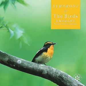 (試聴できます)小鳥のさえずりヒーリング CD 音楽 癒し ヒーリングミュージック 不眠 ヒーリング