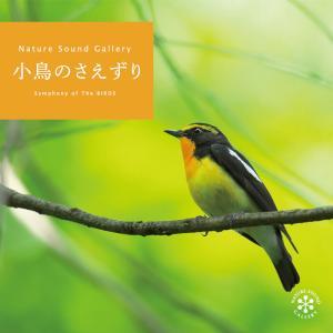 癒し グッズ ヒーリング CD BGM 小鳥のさえずり ギフト プレゼント 自然音 せせらぎ 森 鳥...