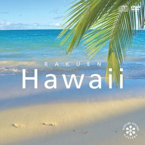 癒し グッズ ヒーリング CD BGM ハワイ RAKUEN ギフト カフェ ハワイアン ミュージック 送料無料 南国 自然音 人気 ストレス 解消 音楽 試聴可 在宅 室内
