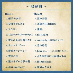 Anniversary/愛のかたまり〜KinK...の詳細画像2