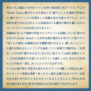 Anniversary/愛のかたまり〜KinK...の詳細画像3