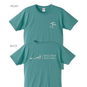 ウォーキングTシャツ C001 (セージブルー)【Mens】|healthselect